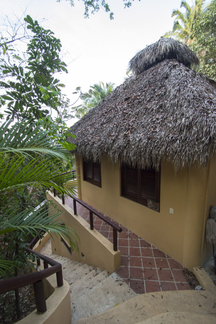Checking In – Tailwind Jungle Lodge
