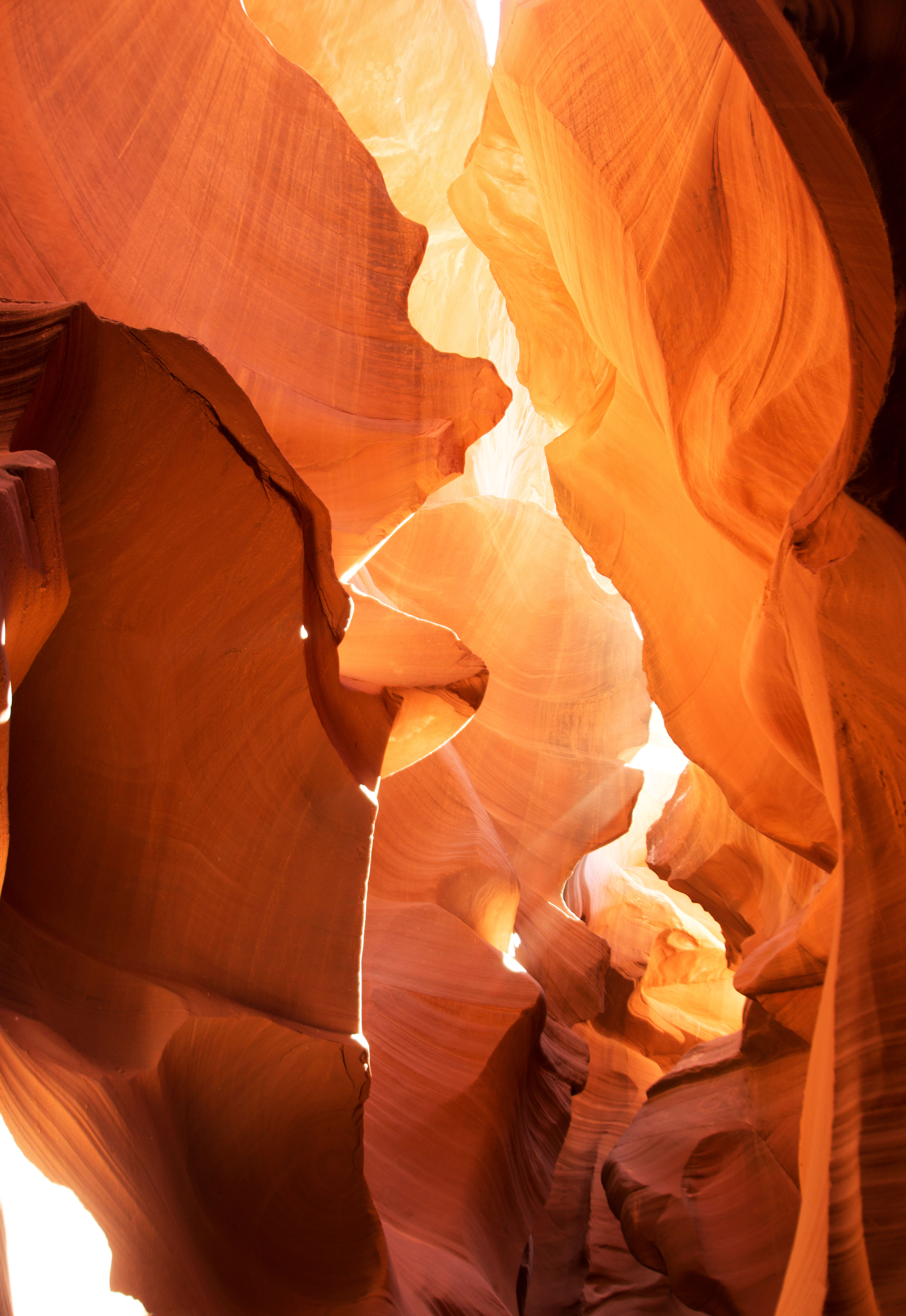 Antelope Canyons - photo (c) Michelle Bazis @freelymi